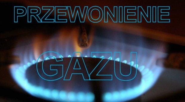 7751_gaz1