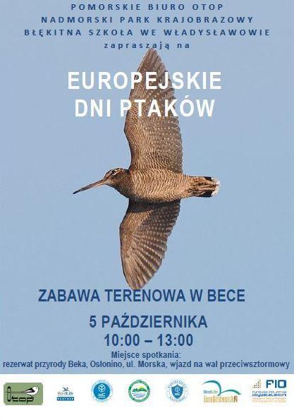 EDP2019_plakat-Beka-final