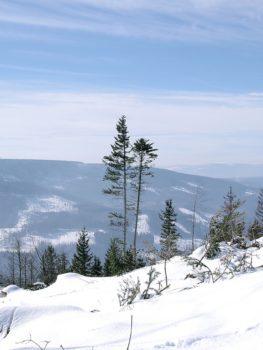 the-opawskie-mountains-3419940_1280